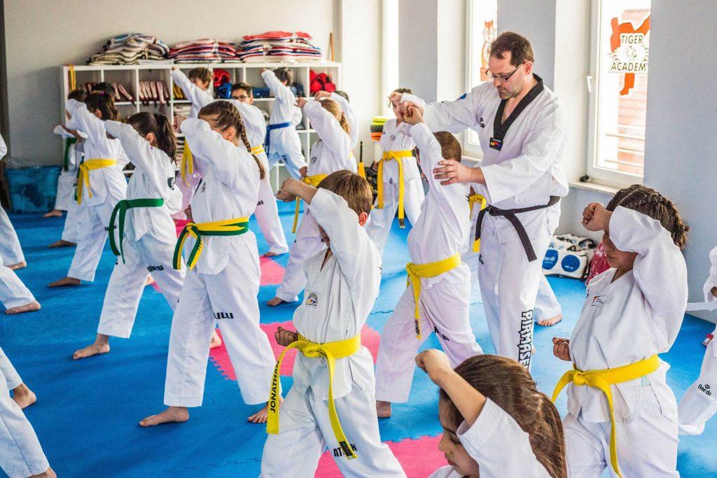 Tiger-Academy-Taekwondo-MMA-Pirmasens-Sportschule_Kampf